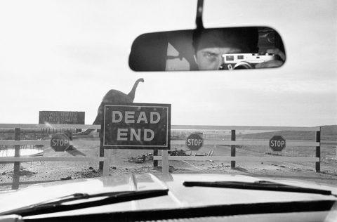 Lee Friedlander: Signs