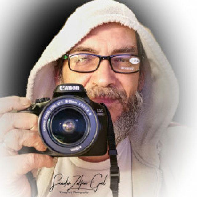 Profile picture of Gal Sandor Zoltan